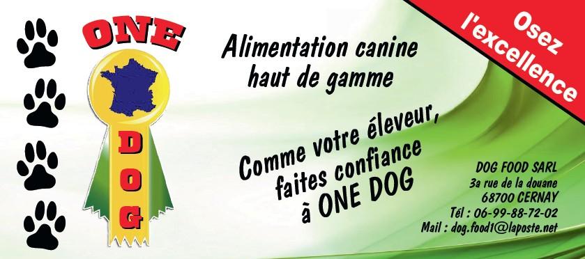 one dog